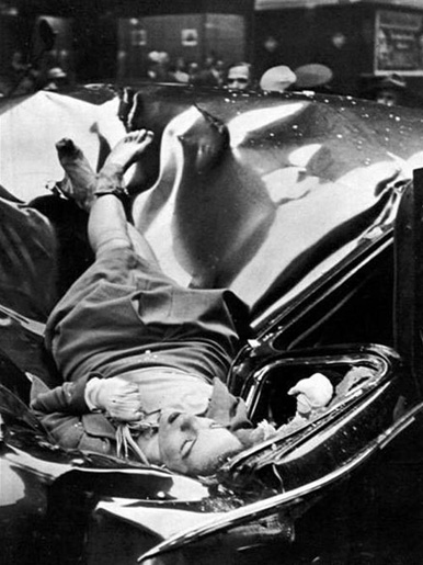 evelyn-mchale_suicide